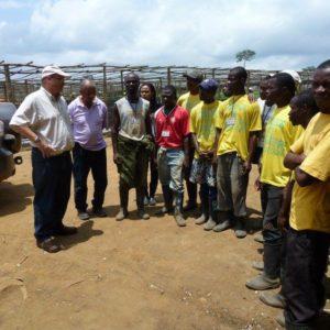 Golden Veroleum (Liberia) Inc