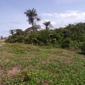 land for sale in liberia